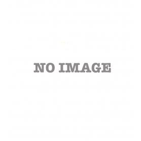 Elinchrom Ranger RX Quadra Asymetric Set mit 2 Blitzköpfen (218937)