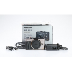 Panasonic Lumix DMC-GX1 (224396)